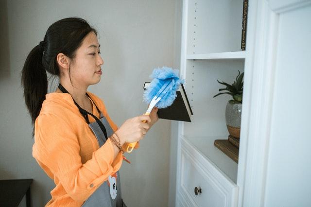 Domestic Helpers